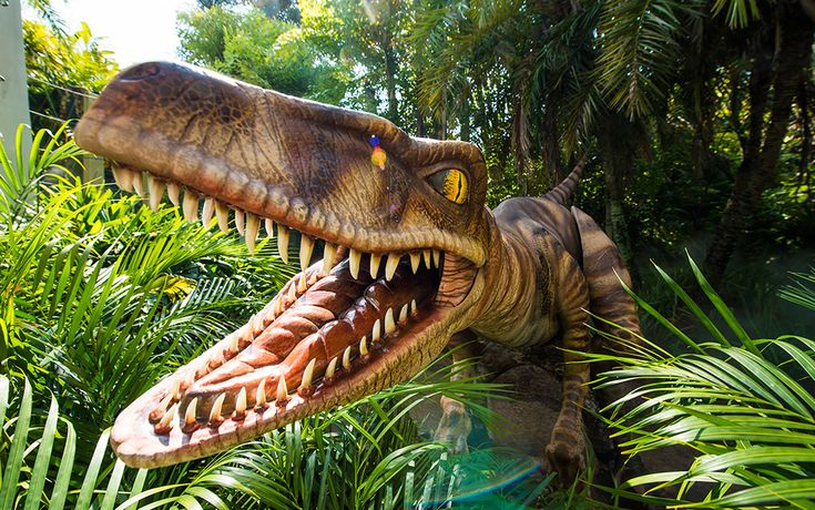 New Raptor Encounter Opens at Universal's Islands of Adventure