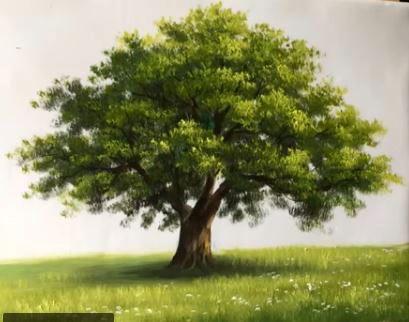 Les 25 meilleures id es de la cat gorie comment dessiner un arbre sur pinterest comment - Comment couper un arbre a la tronconneuse ...