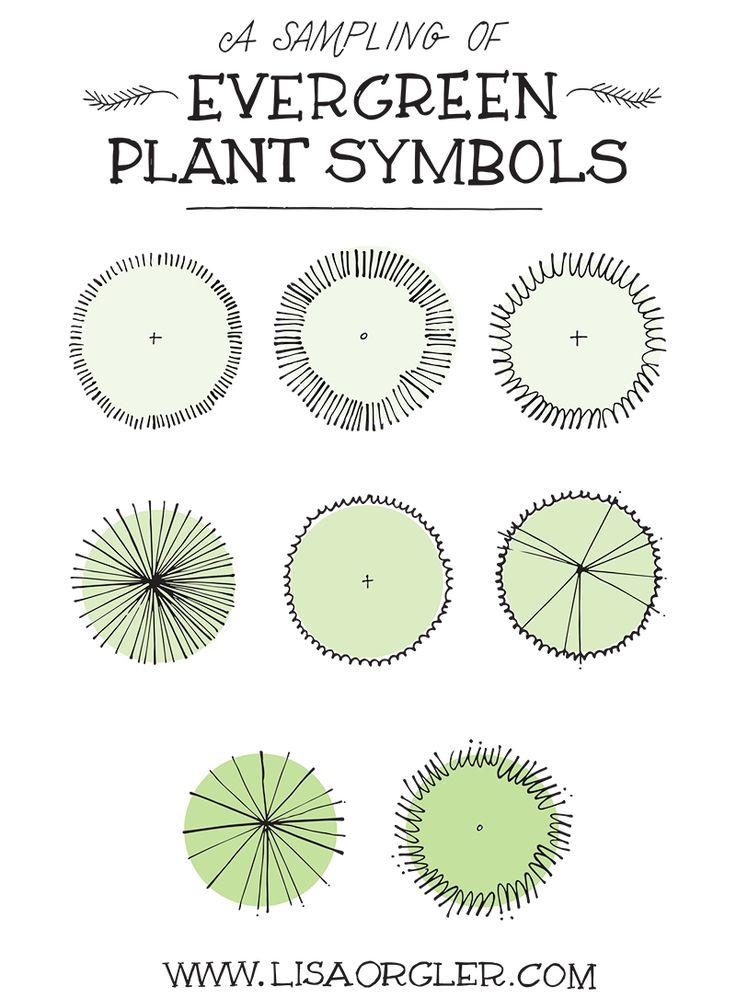 Jul 31 Drawing Plant Symbols Practice Sheet Yard Landscaping