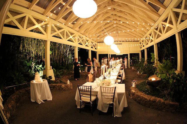 """Cafe Lights in a zig zag with 18"""" lanterns down the center. (Waimea Valley - Oahu)"""