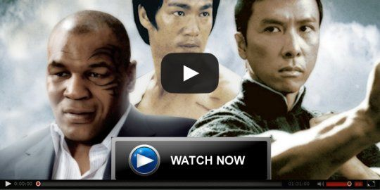 IP Man 3 Full Hindi Dubbed Movie Online Download DVDrip Mp4