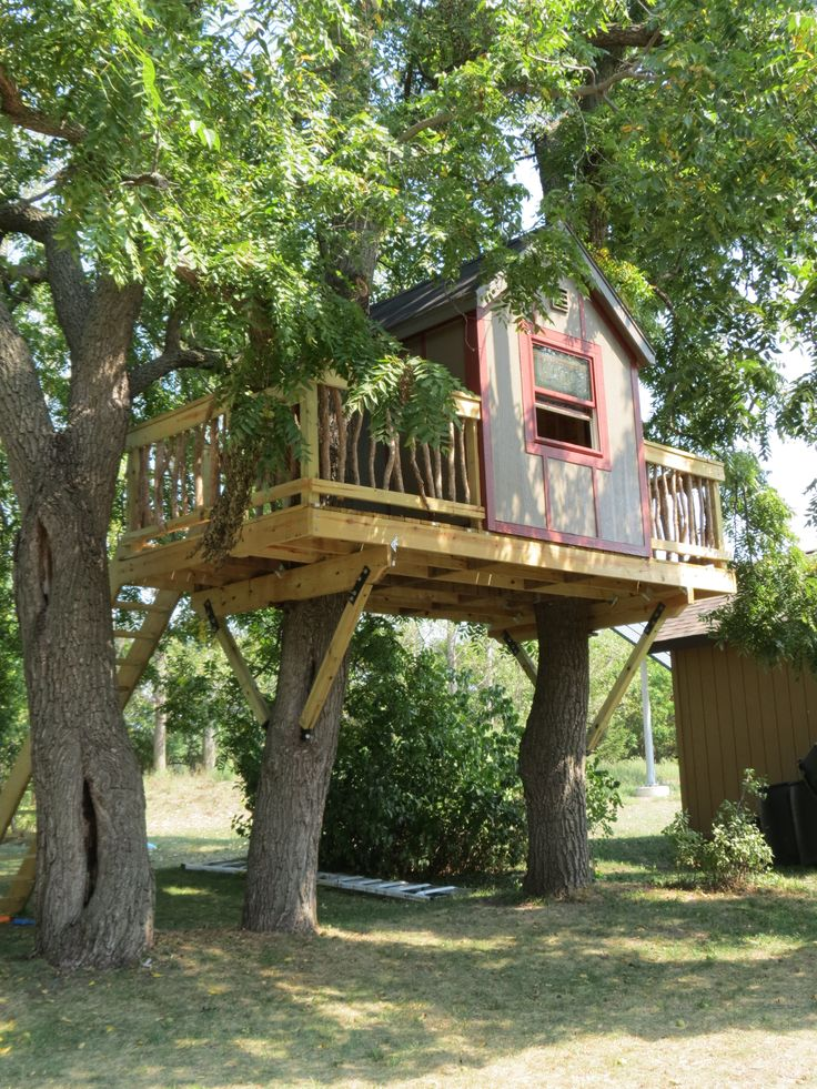 Tree house with cedar branch spindles.