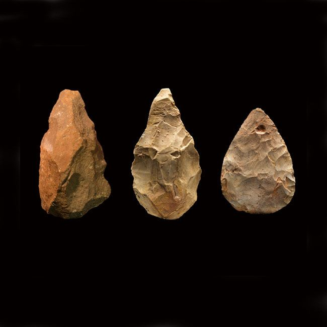 Handy handaxes, these multipurpose tools which could have been used to chop wood, butcher animals, and make other tools, dominated early human technology for more than a million years. Ancient handaxes have been found in Africa (left), Asia (center), and Europe (right).