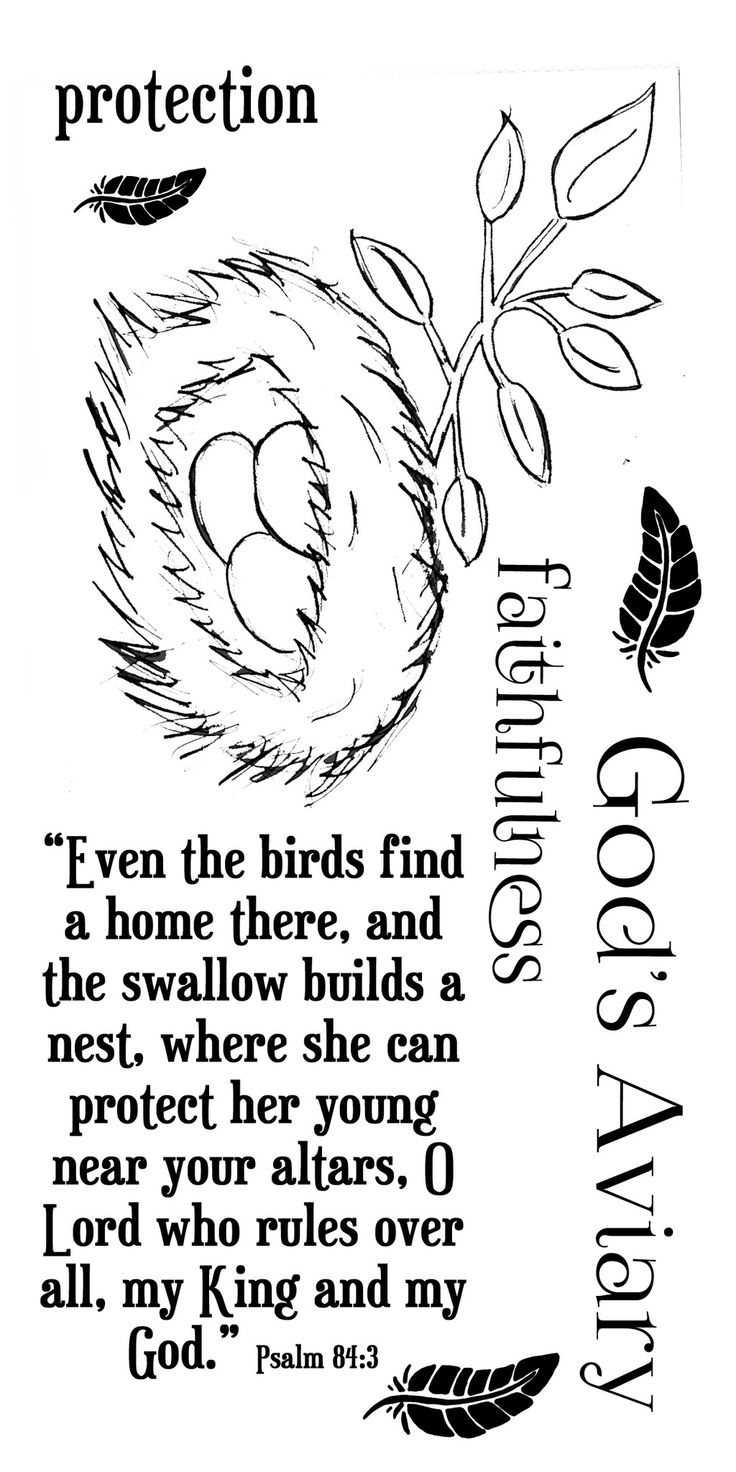 Even the birds find a home there, and the swallow builds a nest, where she can protect her young near your alters. O Lord who rules over all, my King and my God Psalm 84:3 Additional words: faithfulne