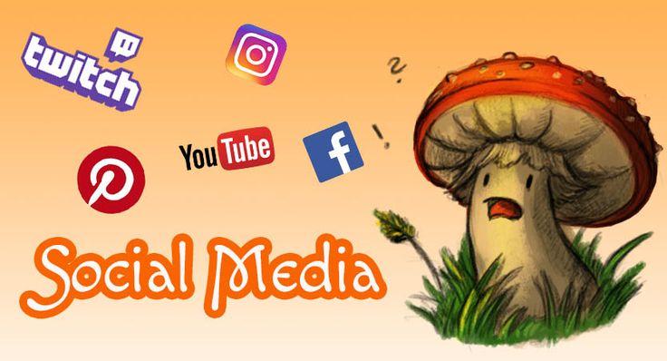 Ab sofort wird es jeden Tag Posts in meinen Social Media Kanälen geben. Den längeren Text gibt es auf meinem Blog.   #facebook #instagram #pinterest #social media #twitch #youtube