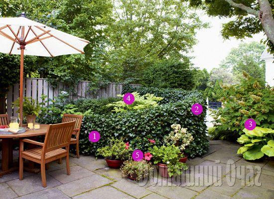 Дизайн маленького сада.