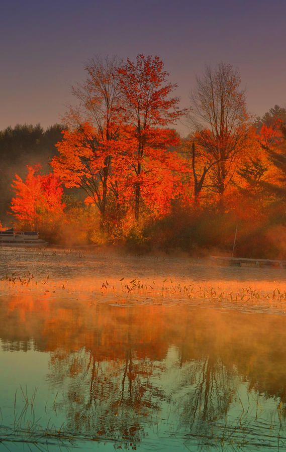 Brant Lake, New York on a foggy morning in the Adirondacks: Color Palettes, States Parks, Brant Lakes, Foggy Mornings, Fall Autumn, I Love Fall, Trees, Color Combinations, New York