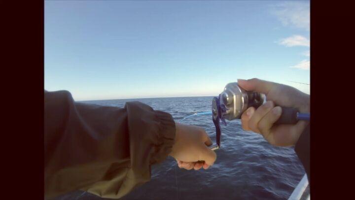 Short clip of the lil ryoga getting streched by a samson fish. #fishingperth #jig #jigging #mccarthy #samsonfish #hunt #ocean #deep #fishing #westernaustralia #daiwa http://misstagram.com/ipost/1552060563520125668/?code=BWKBtv-gnrk
