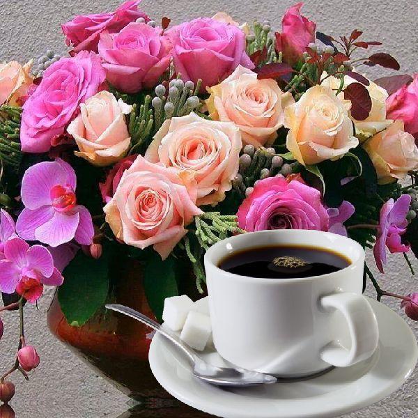 первом случае открытки доброе утро солнышко с розами знает