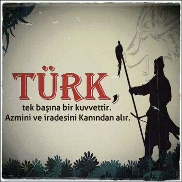 Türk tek başına bir kuvvettir.