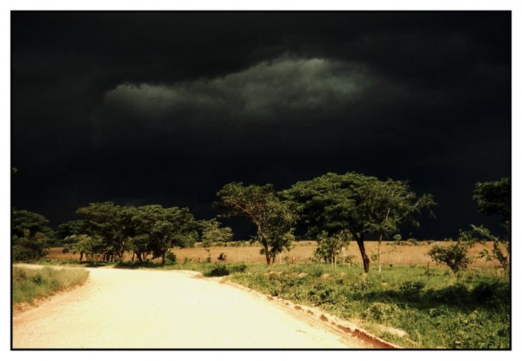 The calm before the storm in Zimbabwe, Africa. INSPIRATION ZIMBABWE DMC - a member of GONDWANA DMCs, your network of global boutique Destination Management Companies - visit www.gondwana-dmcs.net
