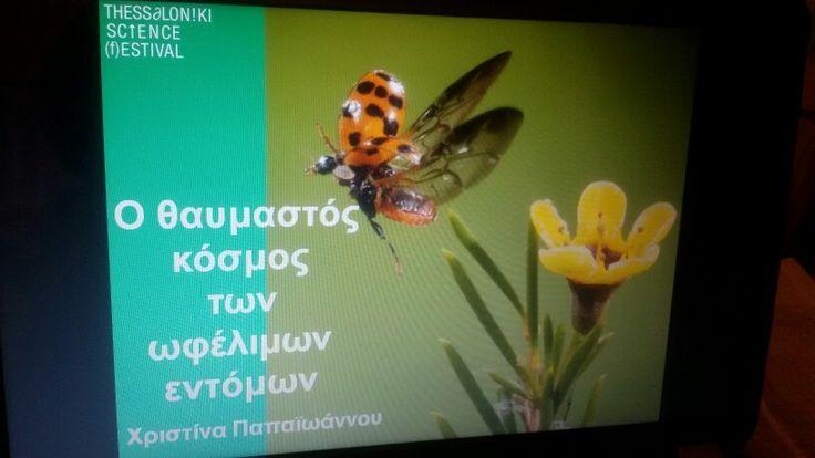 Preparing my presentation for the 1st Thessaloniki Science Festival, 2015.