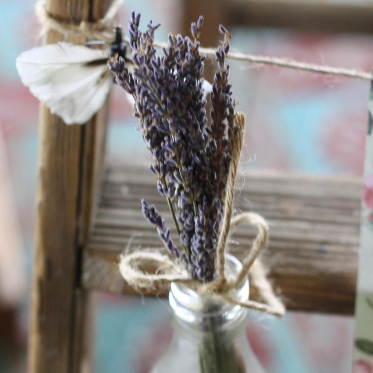 Best 25+ Dried Lavender Wedding Ideas On Pinterest | Lavender Centerpieces,  Rustic Purple Wedding And Dried Babyu0027s Breath
