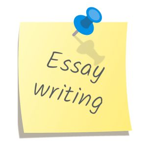 Essay writing - one of the most in demand services of our company. Check how it's easy to order from us! http://www.essay-writing-place.com/essay-writing-service/