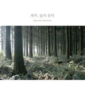 ペク・ジョンヒョン / 済州、森の音楽[ペク・ジョンヒョン] 韓国音楽専門ソウルライフレコード