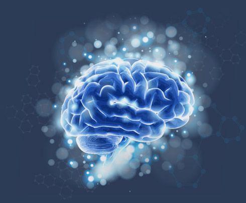 Método Silva de Vida por José Silva - O Sistema de Meditação e Controle Mental Silva - Inscricao Bem Sucedida Oferta Unica Vez
