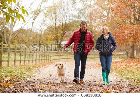 Mature Couple On Autumn Walk With Labrador