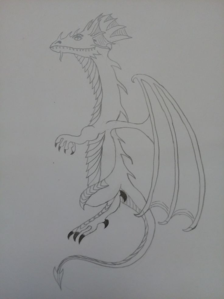 Just dragon