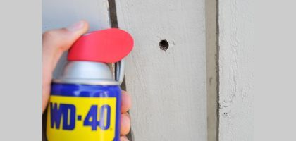 How to Get Rid of Wood Bees | eHow
