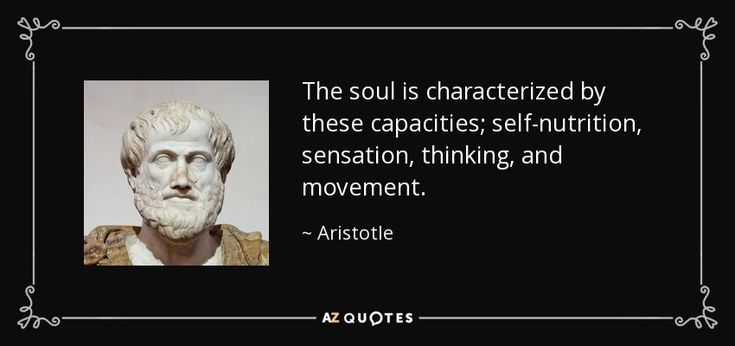 20 Aristotle Quotes To Enlighten You: 1000+ Aristotle Quotes On Pinterest