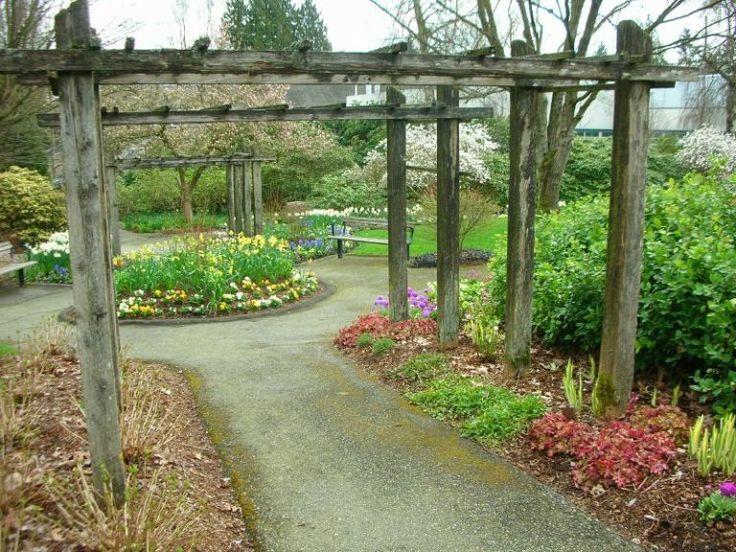 Best 25+ Garden Arch Trellis Ideas On Pinterest