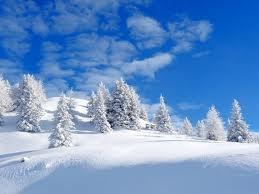 #patchholidayfun  melbourne snow - Google Search
