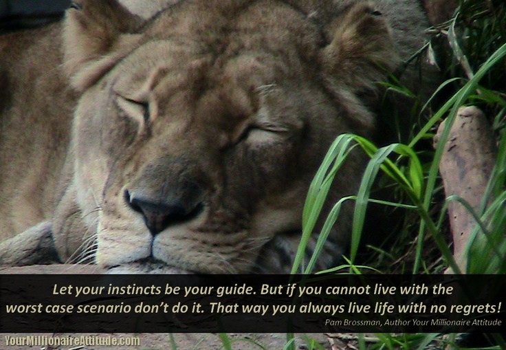 Let your instincts be your guide. But if you cannot live with the worst case scenario don't do it. That way you always live life with no regrets!  Pam Brossman, Author