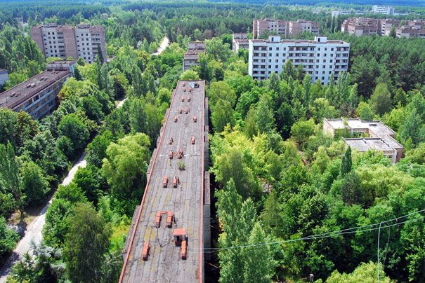 """""""Pripyat, ghost city abandoned after chernobyl catastrophe, has grown to a forest. nature takes over and invades and collapses human creations the views remind some apocalipthic films like I am a Legend; Views from highst building in town, a former Hotel""""."""