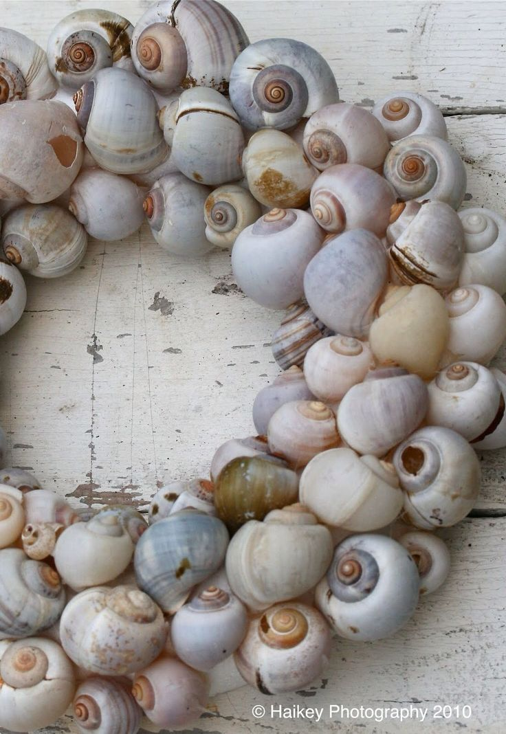 ۞ Welcoming Wreaths ۞  DIY home decor wreath ideas - shells