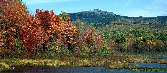 Alki Tours New England