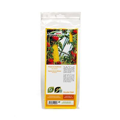 DCM Yellow-Trap® - Vangen en monitoren van insecten. Een gele lijmval is zeer aantrekkelijk voor wittevlieg, bladluis, mineervlieg en andere vliegende insecten in moestuin, siertuin en boomgaard. Deze val geeft je een beeld van de graad van aantasting.