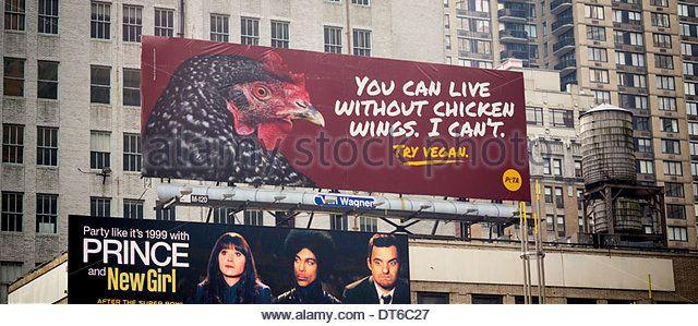 Image result for animal rights organizations peta