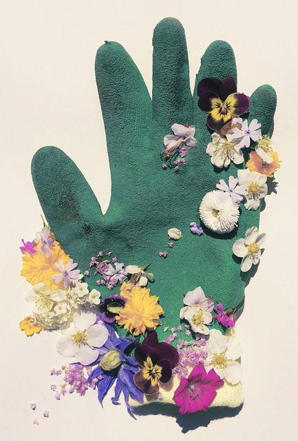 Flowers by. Tim Walker photography