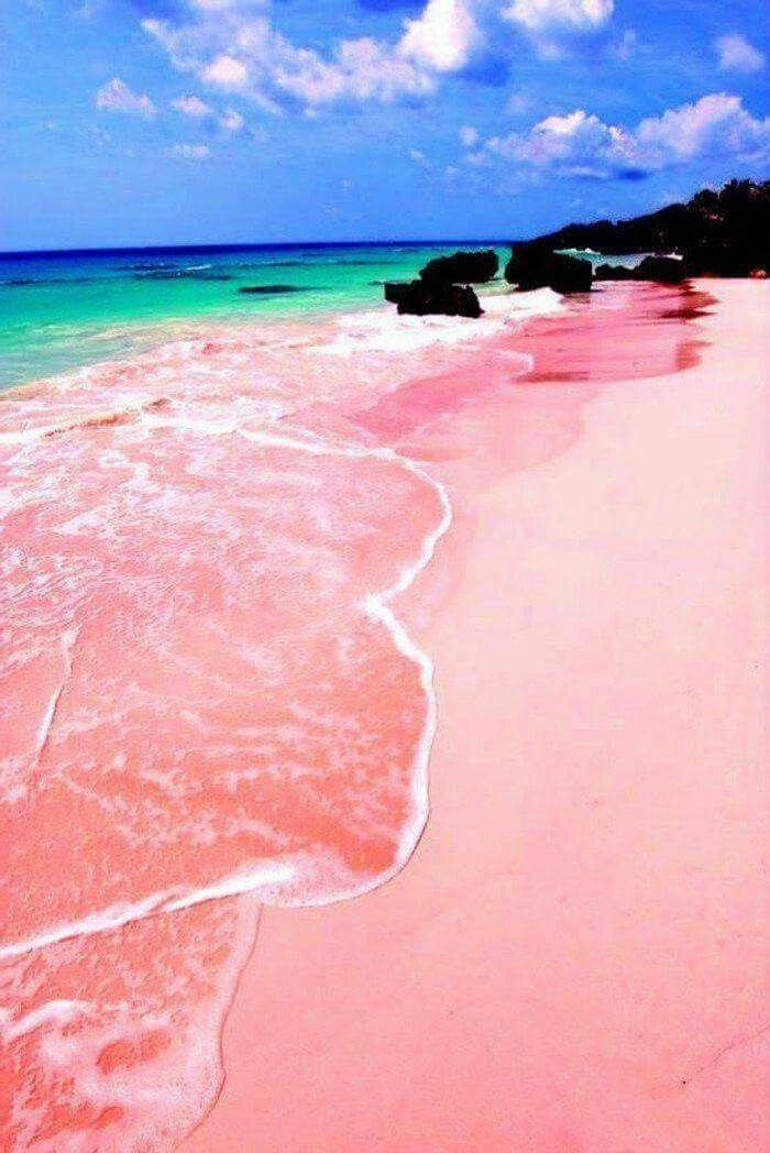 Pink Sand Beach Harbour Island Bahamas Honeymoonbahamassummer Pink Sand Beach Bahamas Pink Sand Beach Best Island Vacation