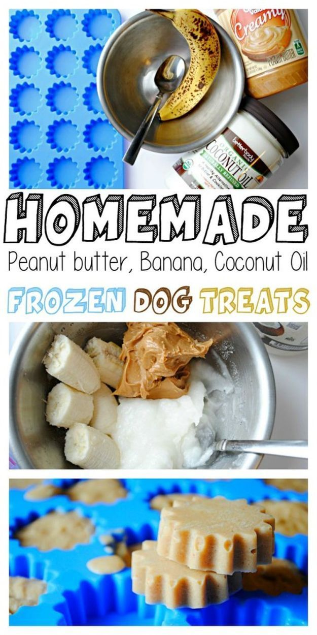 Homemade Frozen Peanut Butter Banana Coconut Oil Dog Treats | 17 Healthy Homemade Pet Food Recipes and Treats