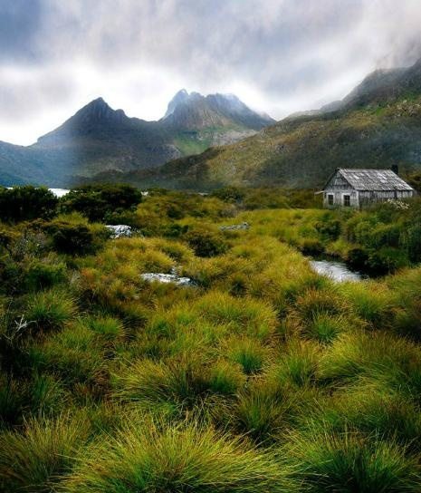 Cabin in Tasmania. Can we live here please?