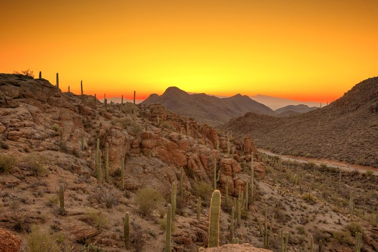 #Fun in the #Tucson sun! #AZ