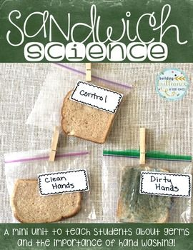 Sandwich Science-A Mini Unit About Germs and the Importanc