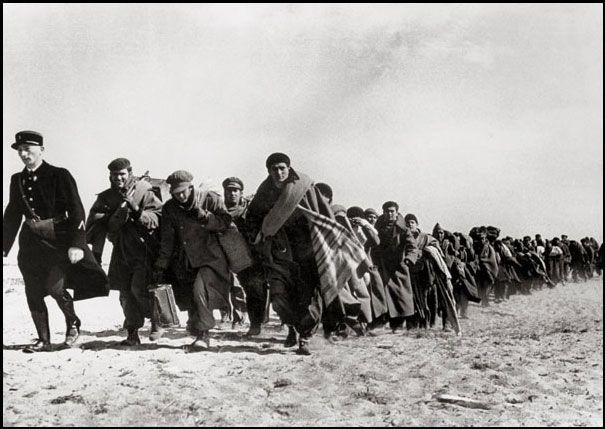 Robert Capa  Réfugiés espagnols conduits vers un camp  entre Argelès-sur-Mer et Le Barcarès, mars 1939  Tirage sur papier baryté, 25 x 35,5 cm  BNF, Estampes, acquisition 1964-12200. Ep-25-Fol.