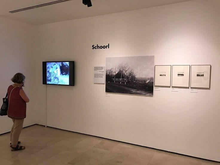 La nueva exposición 'Palau mira a Picasso' de la Fundación Pablo Ruiz Picasso- Museo Casa Natal, puede visitarse hasta el 8 de octubre en las salas de la plaza de la Merced (21 junio)