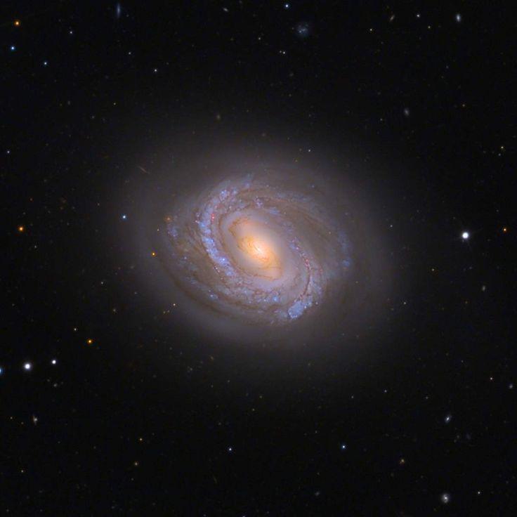 Los objetos Messier: M58 (Messier 58) es una galaxia espiral barrada (como la Vía Láctea) que se encuentra en la constelación de Virgo, a unos 68 millones de años-luz de distancia de la Tierra. Es una de las galaxias más brillantes conocidas en el cúmulo de Virgo. #astronomia #ciencia