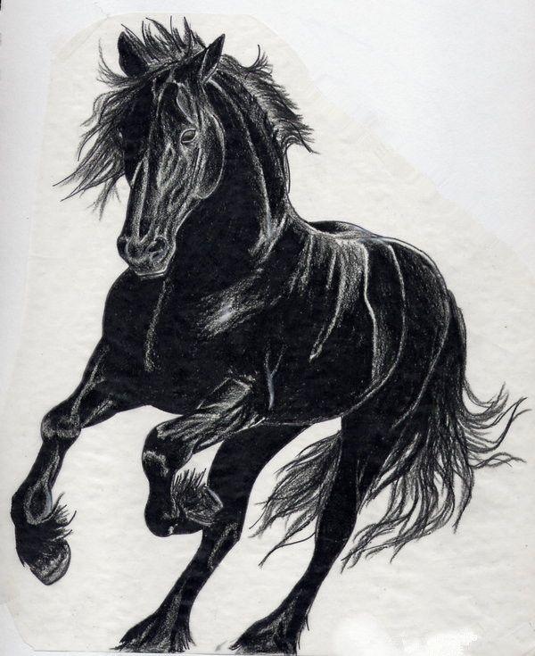 black black horses