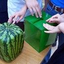 Step 0: Grow a square watermelon