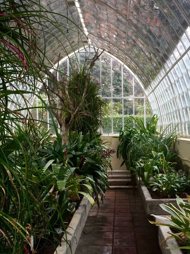 1000 images about greenhouse conservatory garden shed for Walk in greenhouse big lots