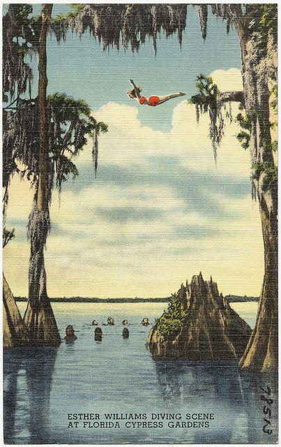 Esther Williams diving scene at Florida Cypress Gardens  http://www.kickstarter.com/projects/theoliviadarlings/the-olivia-darlings-present-an-aquatic-arts-reviva