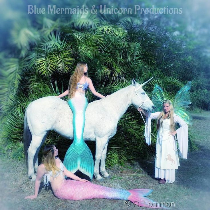 Unicorns And Fairies Real 183 best Real M...