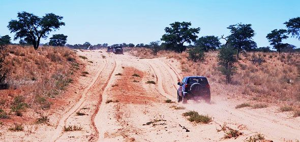 A view of a 4x4 vehicle adventure.