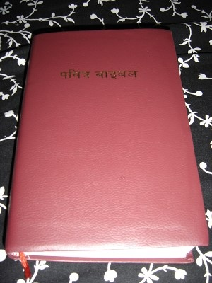 Nepali Holy Bible / Nepalese New Revised Version (Jesus words in Red Letter Edition) / With maps / Red Leather Nepali Bible