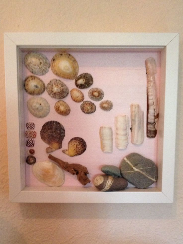 Muschelbild, Sea Shell, DIY