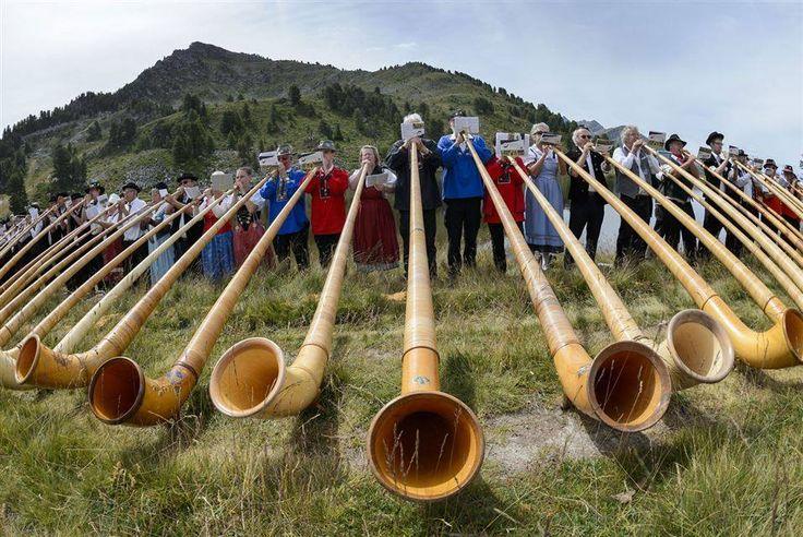Nendaz.- 245 sopradores de trompa alpina executam todos juntos no último dia do14º concurso Internacional de trompa alpina nas pastagens da montanha de Tracouet acima de Nendaz nos alpes suíços do sul em 26 de Julho de 2015.   O instrumento de sopro, que é uma parte do folclore Suiço, é feito de madeira, tem um bocal em forma de taça e é usado por moradores das montanhas na Suíça.